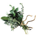 Sprig of Herbs